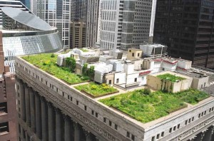 City with most 'Green' buildings
